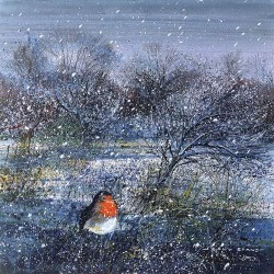 Winter Orchard Robin